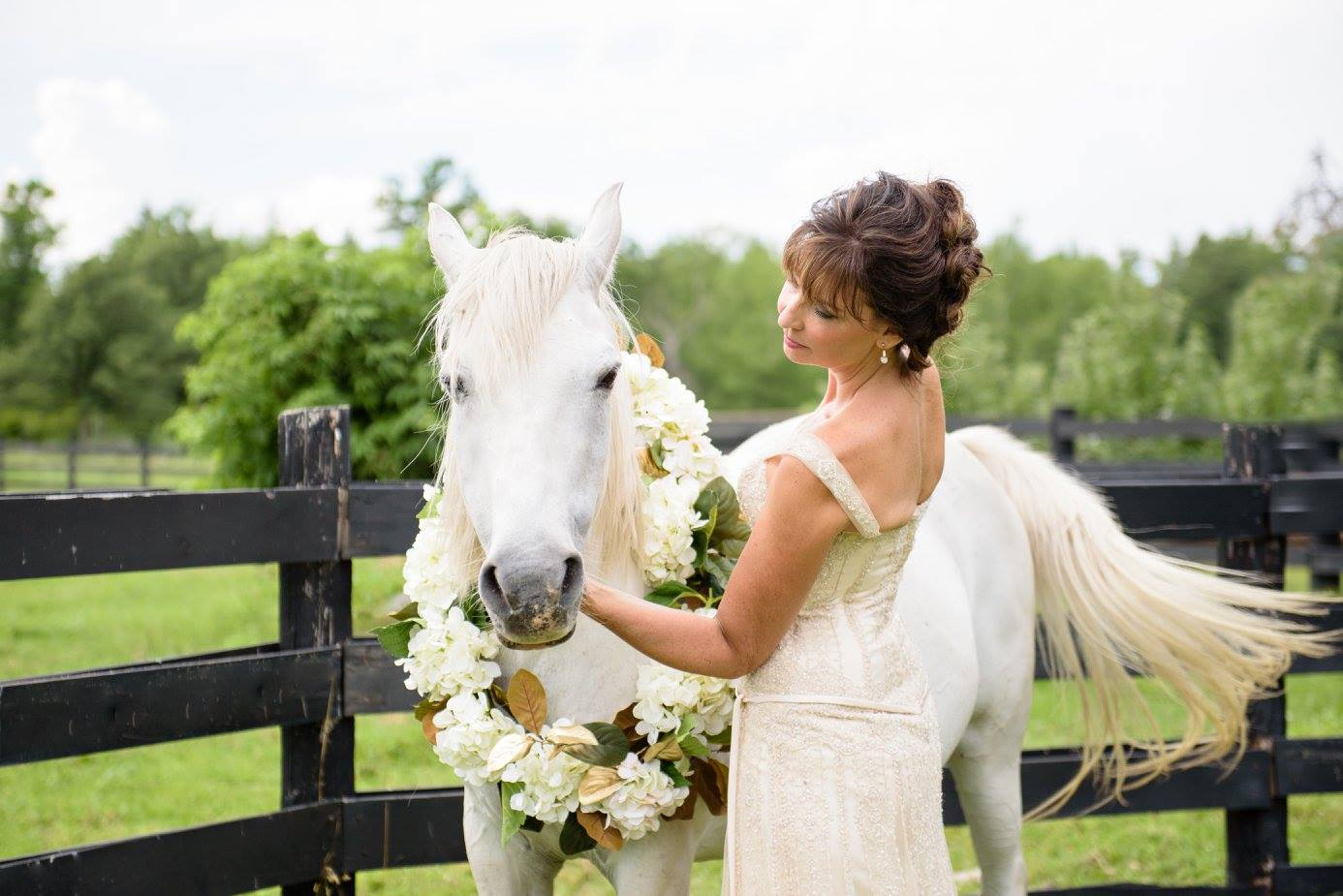 horse and the bride